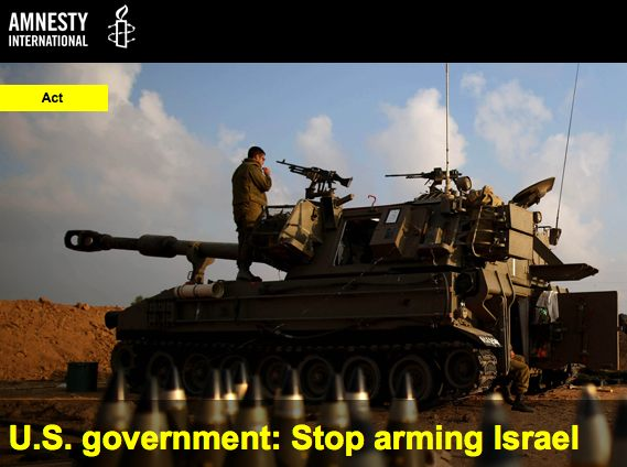 amnesty-stop arming Israel